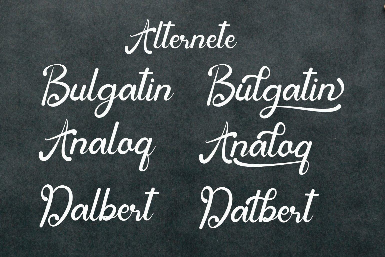 Bulgatin example image 6
