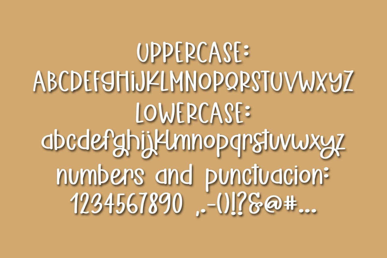 Seashells & Seas Stars - A Fun Hand-Written Font example image 2