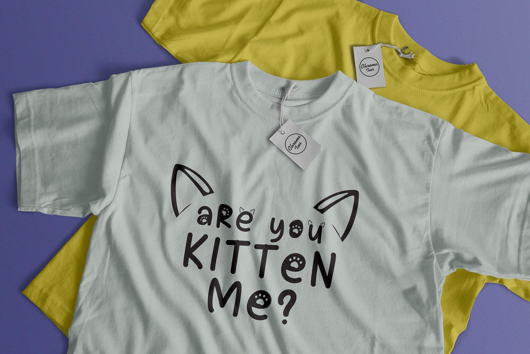 Cat Meow - 3 Font Plus Bonus Clip Arts example image 2