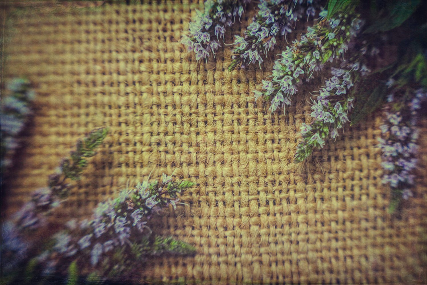 Vintage textural summer background. Old burlap and flowers example image 1