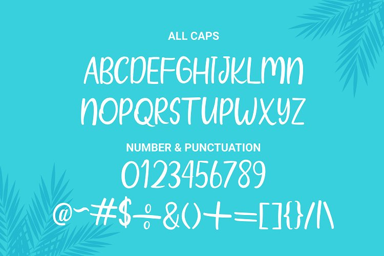 Wind Palm - Handwritten Font With Extras example image 6