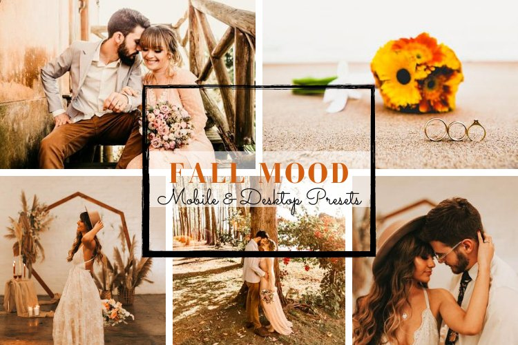 Fall Mood Mobile & Desktop Lightroom Presets example image 1