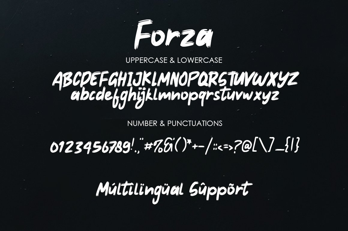 Forza - Brush Typeface Font example image 4