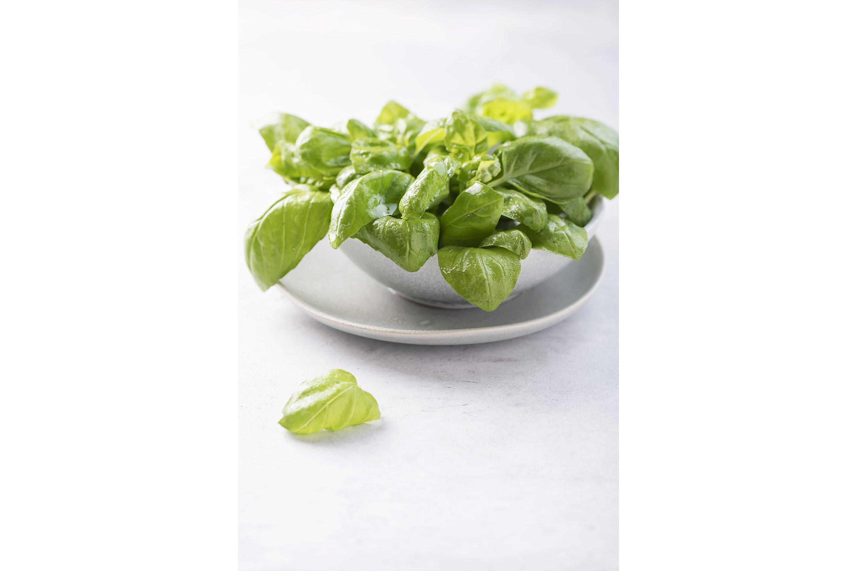 Fresh green basil in the ceramic bowl example image 1