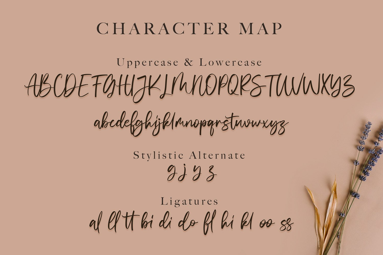 Vivy Aquilla - Handwritten Font example image 11