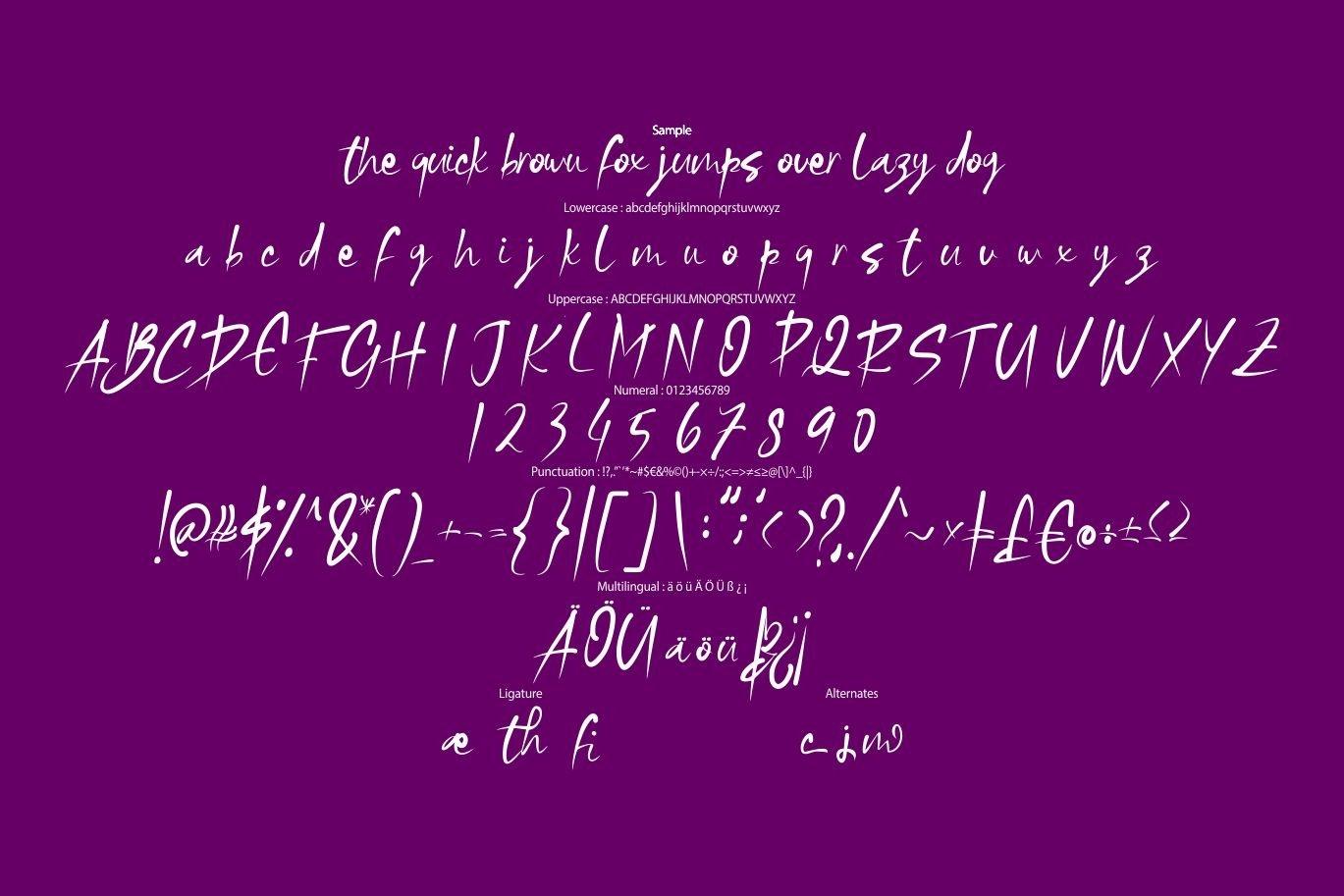 Wipela   Modern Unicotype Font example image 6