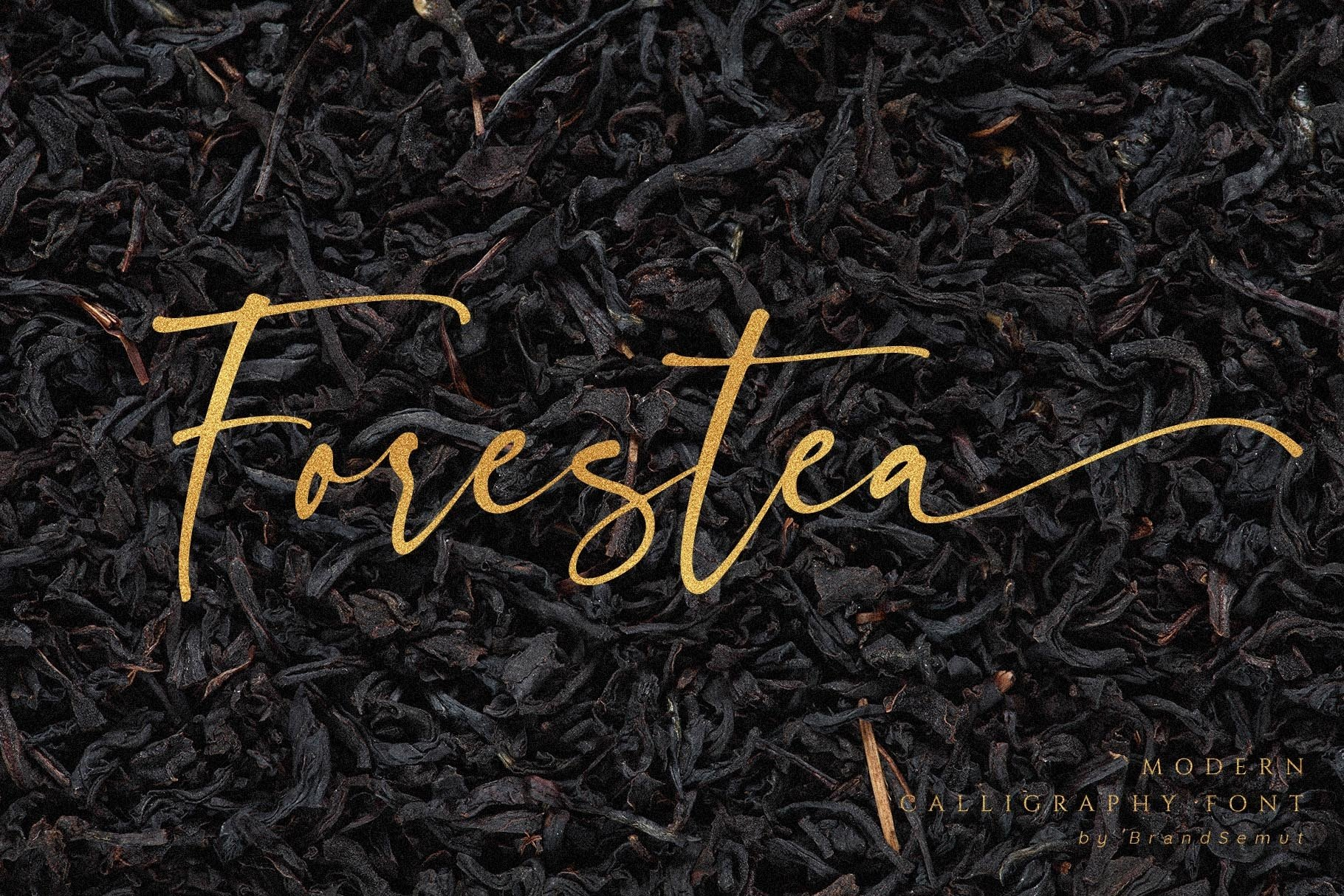 Forestea - Classy Script example image 14