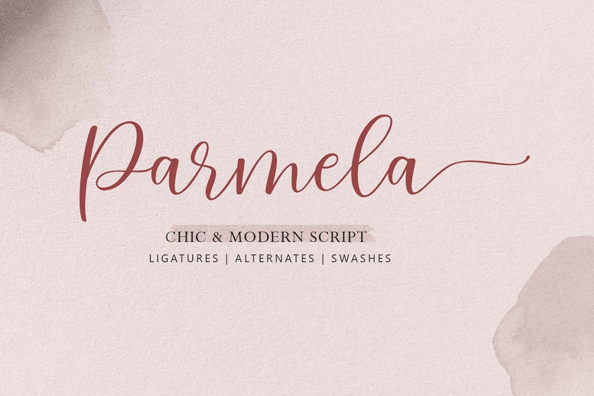Parmela - Chic Modern Script example image 1