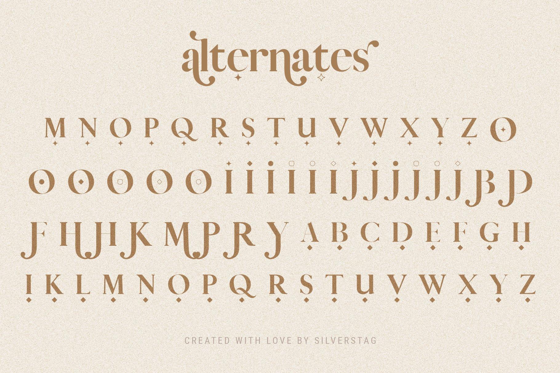 Vicky Christina - Chic & Stylish Ligature Serif Font example image 8