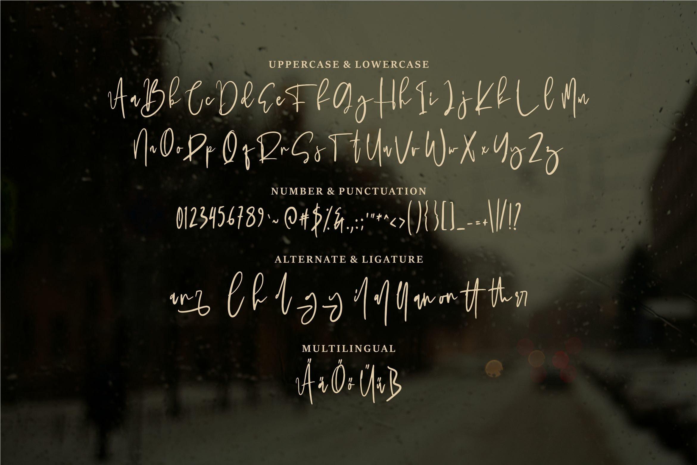 Panala - A Bold Signature Font example image 4
