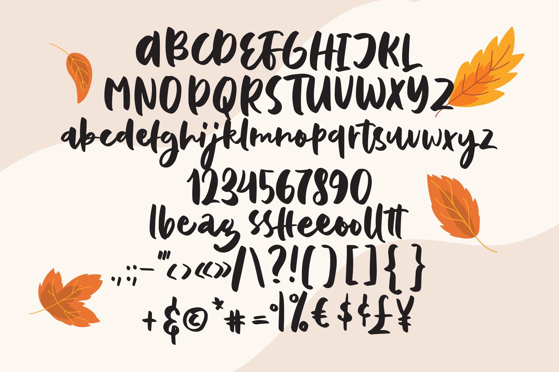Baffina - Script Fancy Fonts example image 3