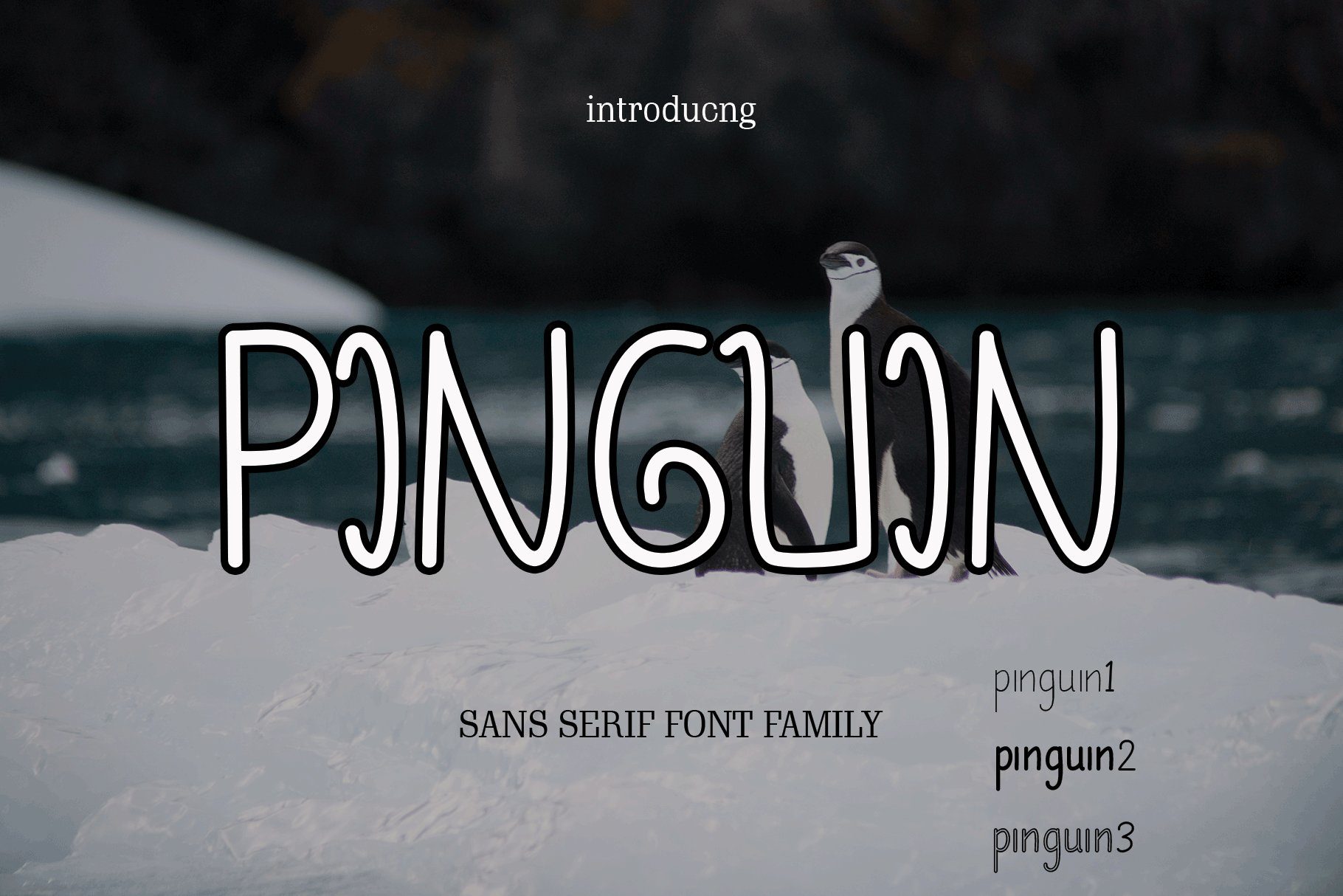 pinguin example image 8