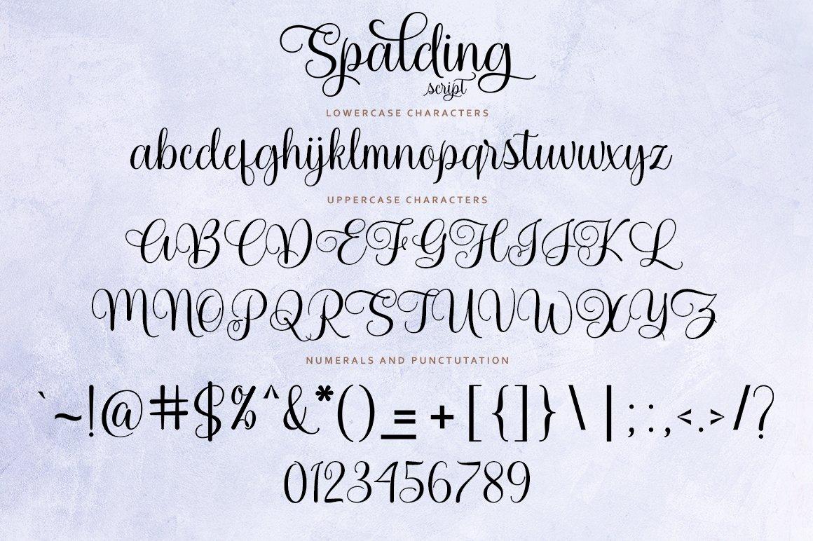 Spalding Script example image 8