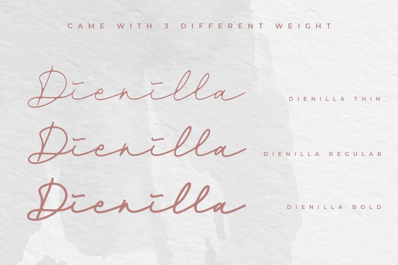 Dienilla -Luxury Handwritten- example image 14