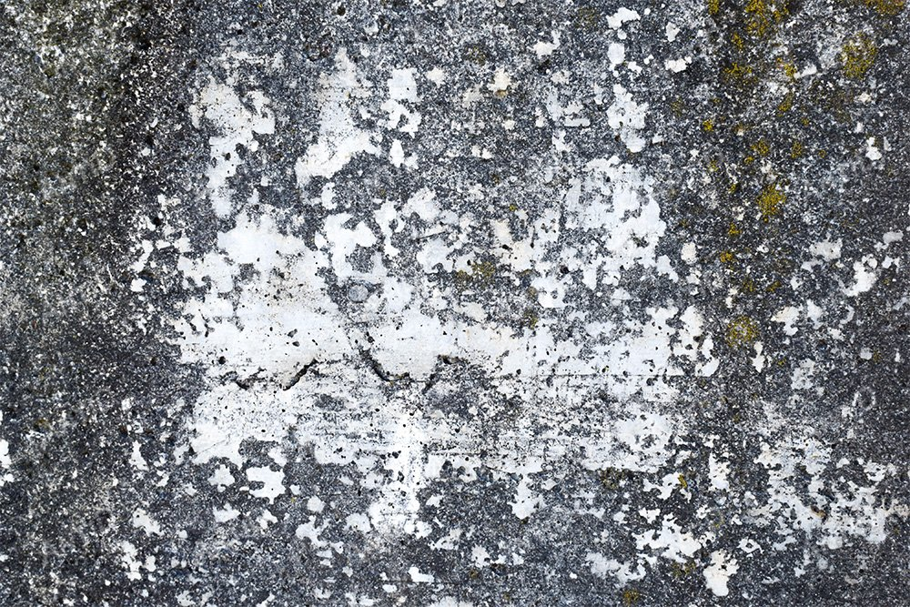 Texture of exterior concrete wall. example image 1
