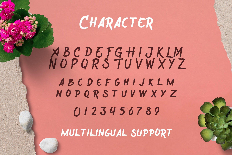 Wreckout - Decorative Brush Font example image 14