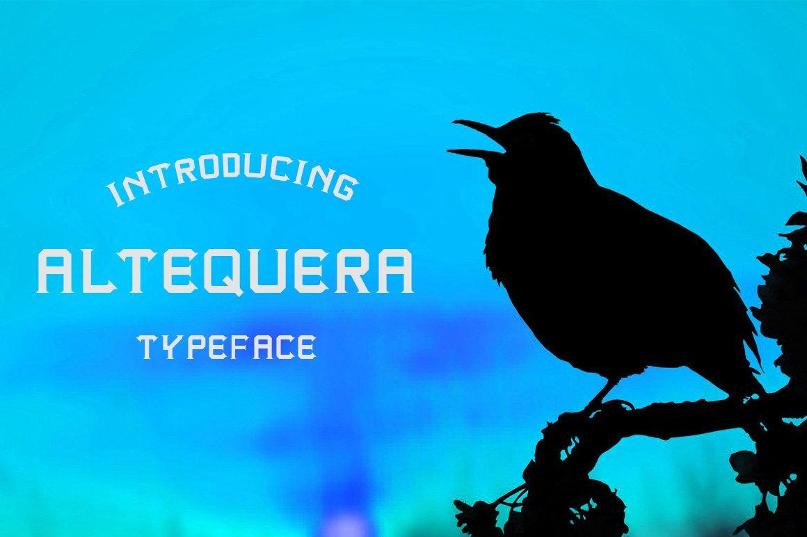 Altequera Typeface example image 3