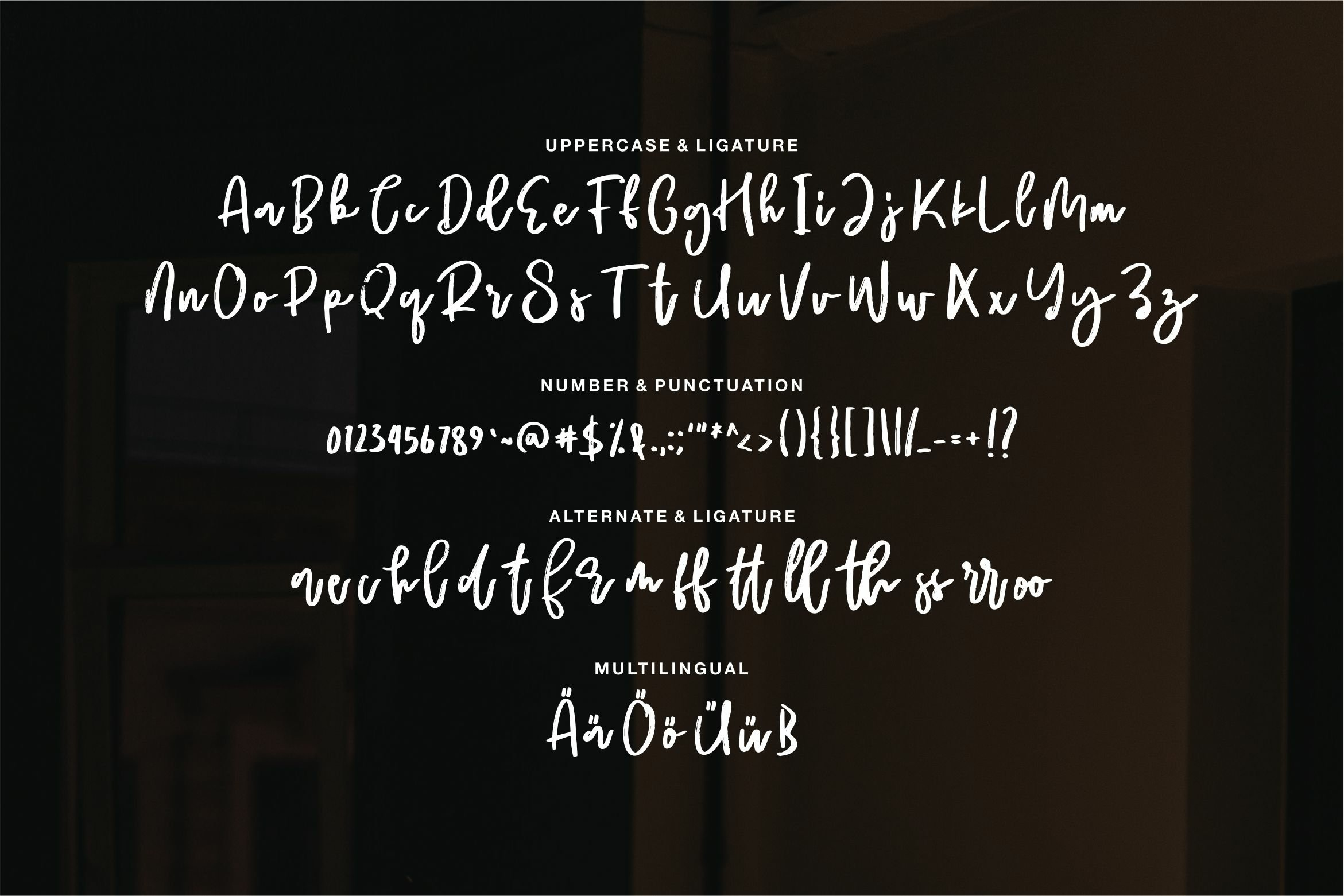 Biertey - A Script Brush Font example image 4