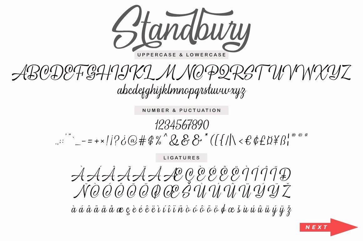 Standbury Script example image 11