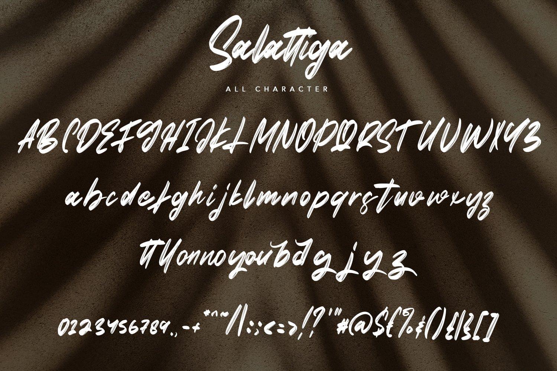 Salattiga - Script Brush Font example image 7