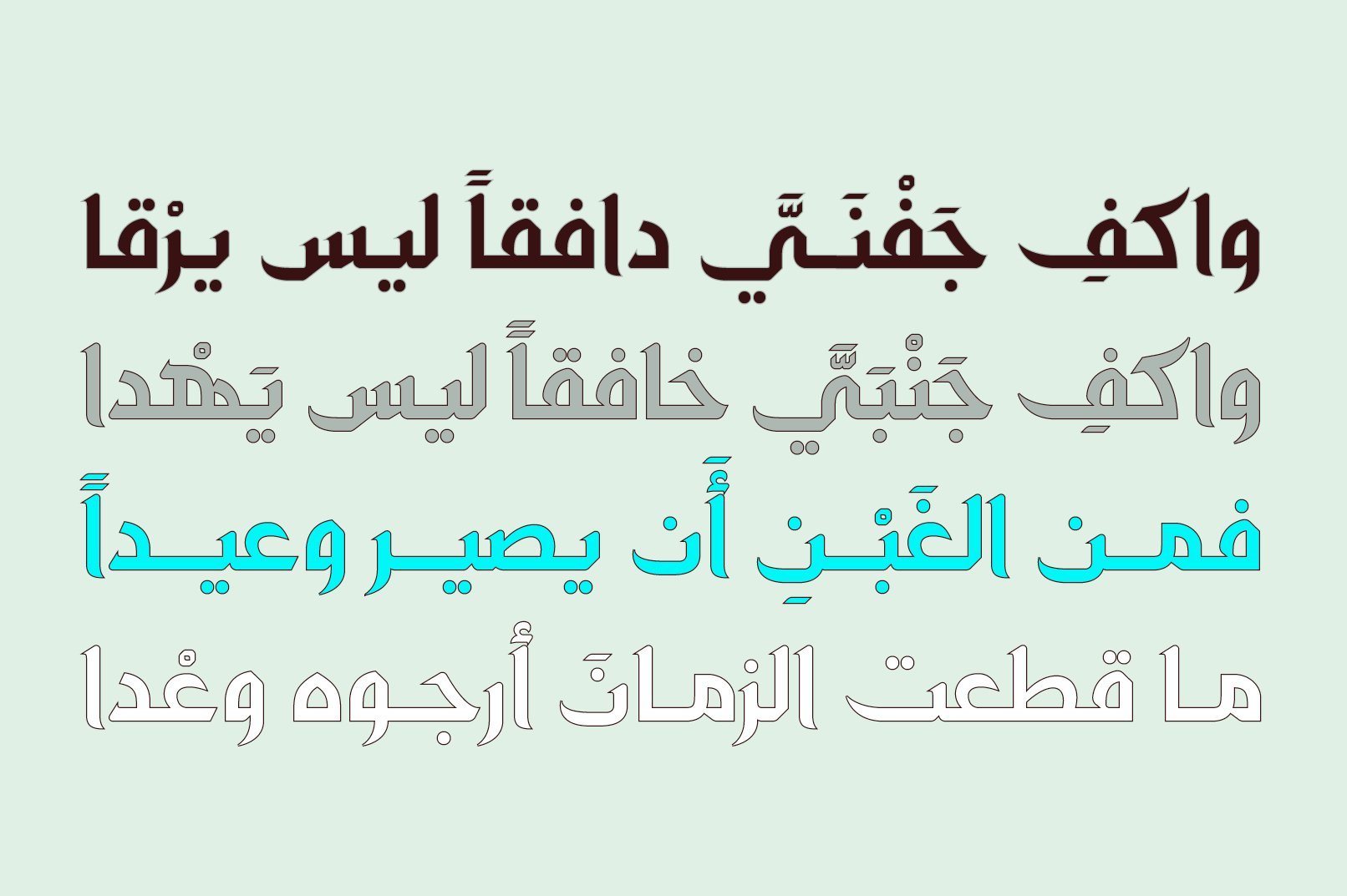 Zahey - Arabic Font example image 7