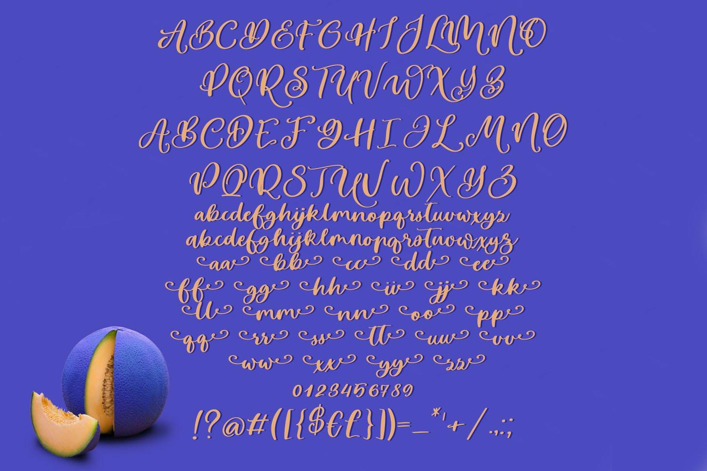 Melon Story Script Font example image 5