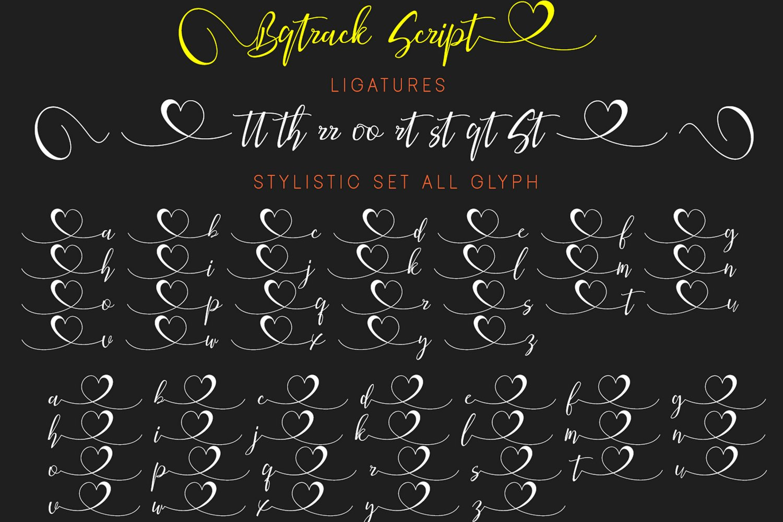 Bqtrack Calligraphy Script Font example image 4