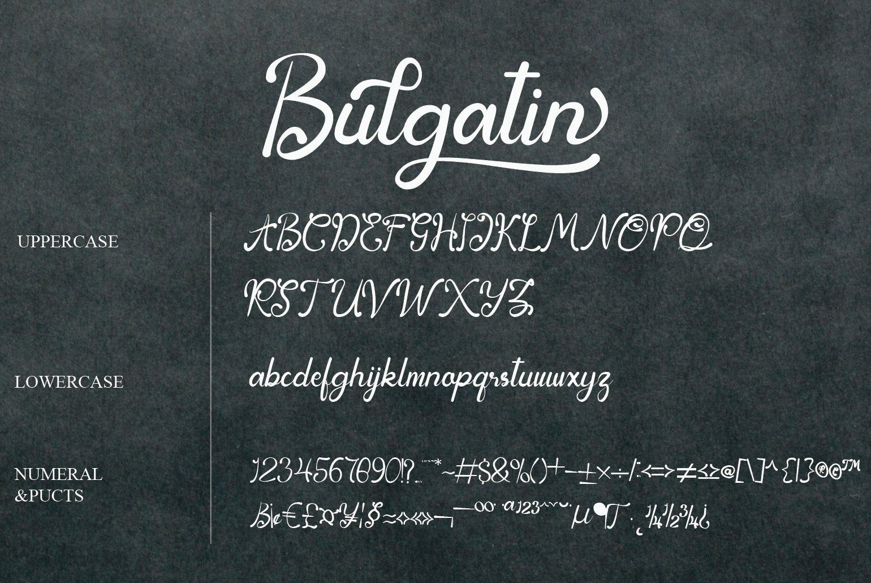Bulgatin example image 9