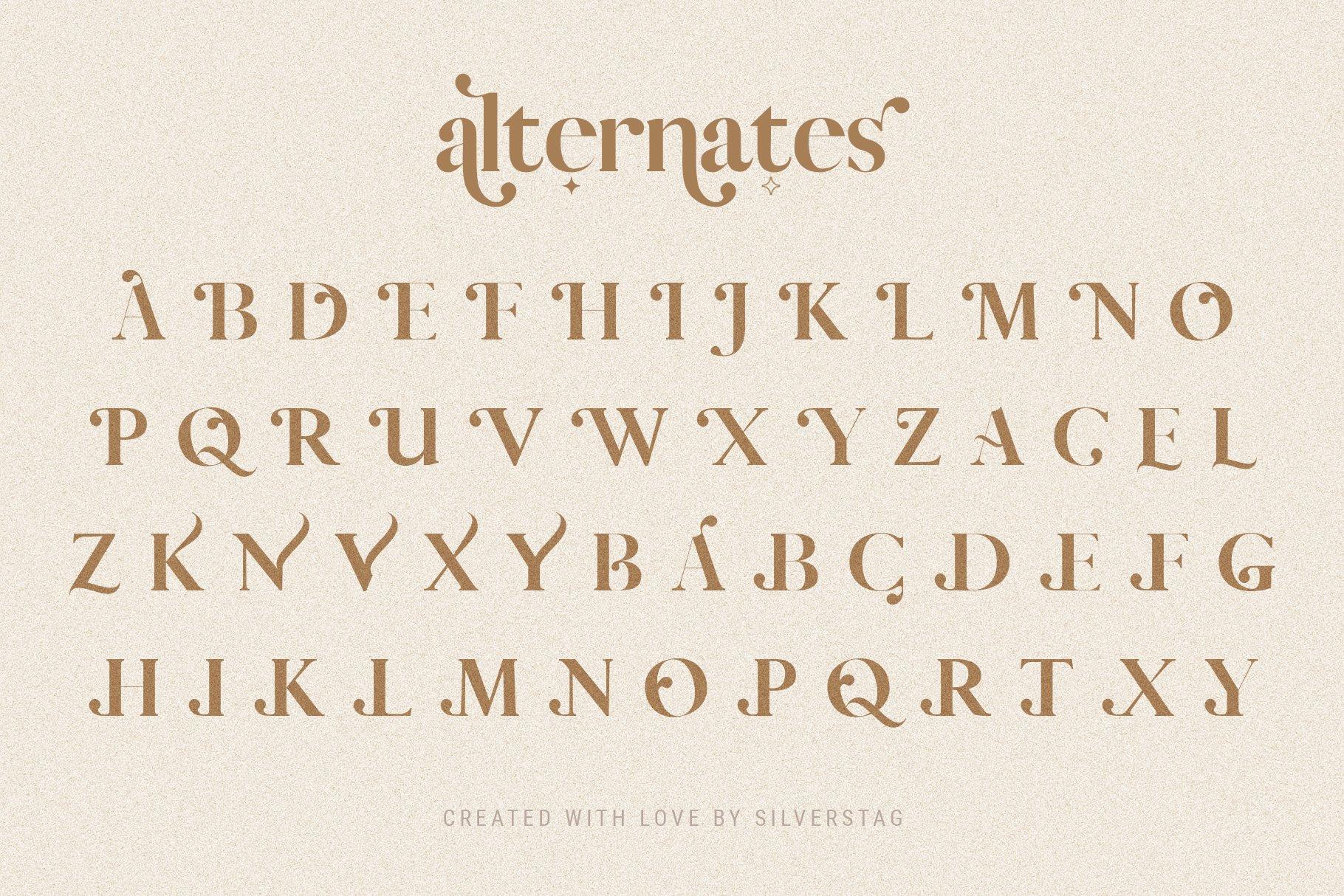 Vicky Christina - Chic & Stylish Ligature Serif Font example image 14