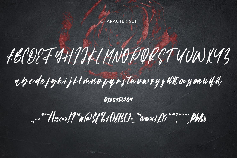 Stainless - Handwritten Script Font example image 5