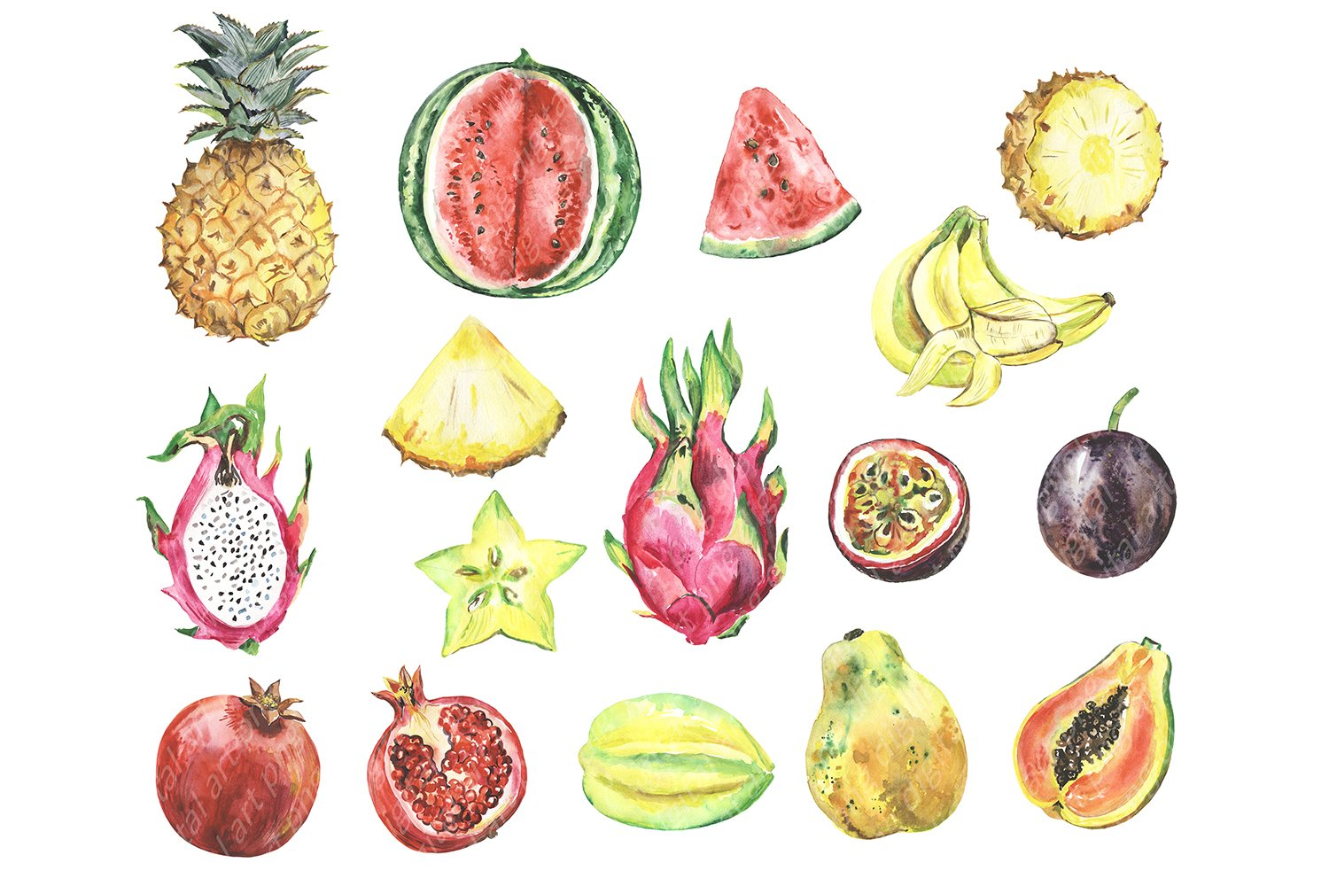 Watercolor tropical fruit clipart. Summer clip art. Fruits example image 2