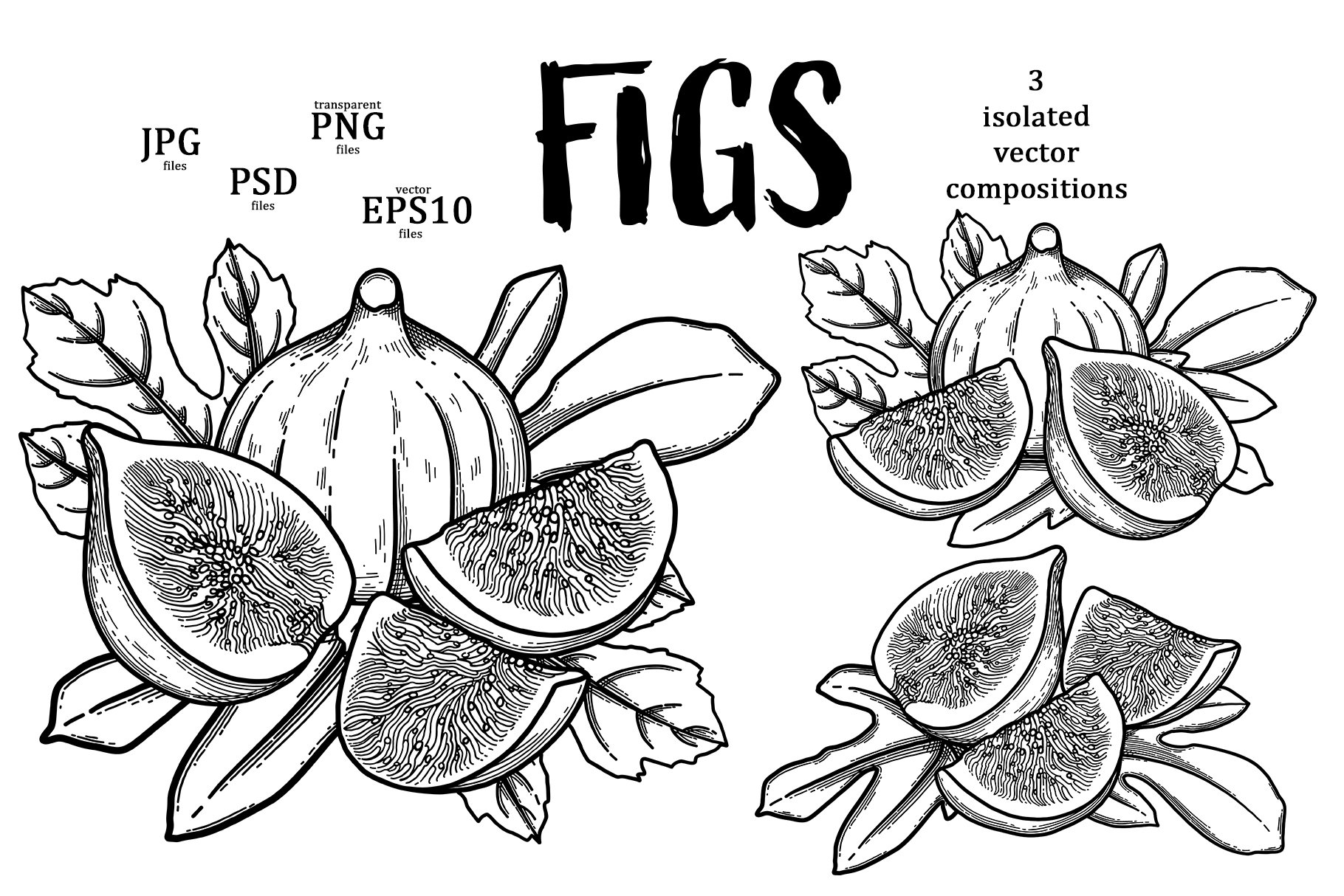 Figs example image 5