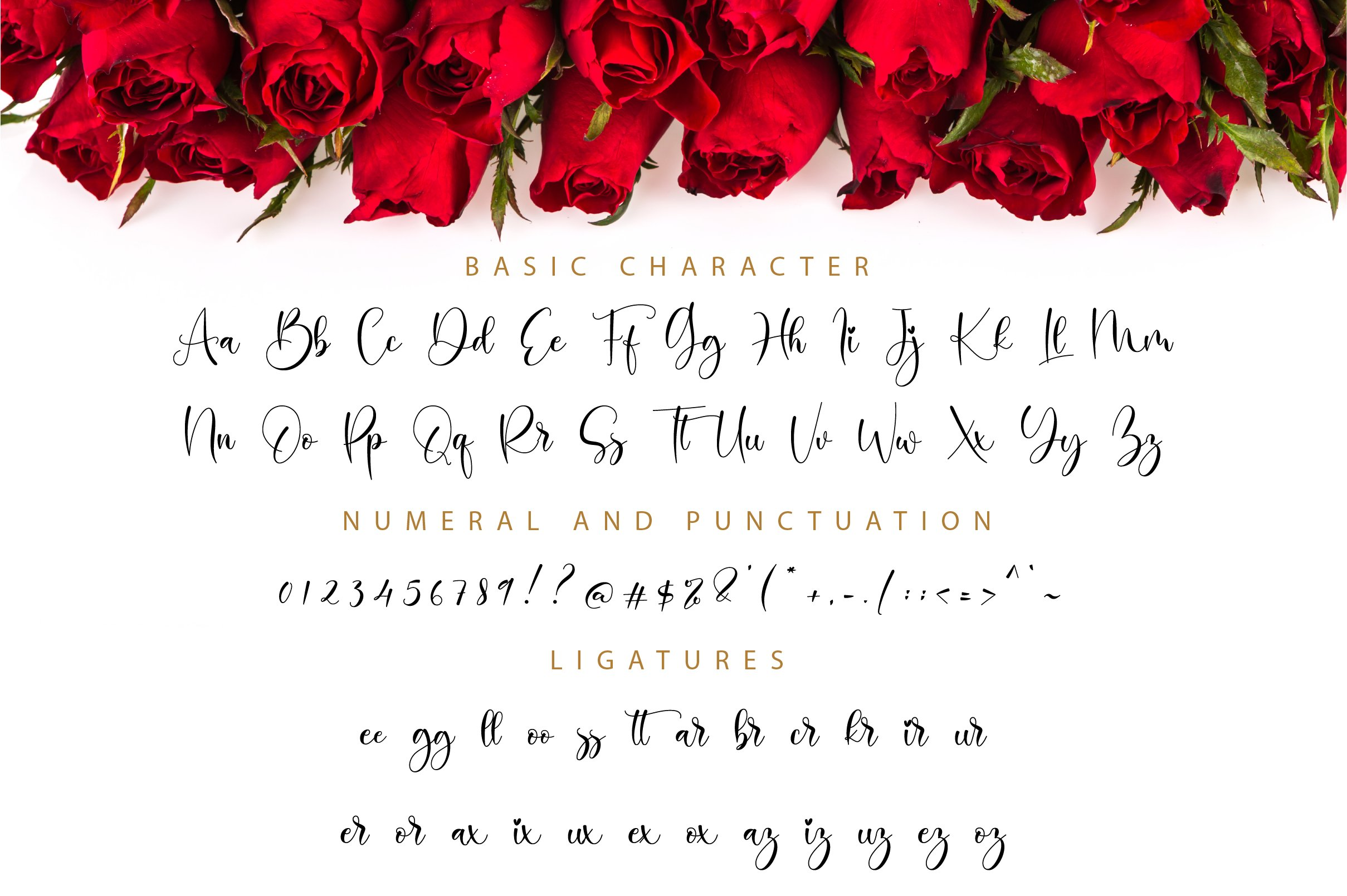 Balimora Script example image 11