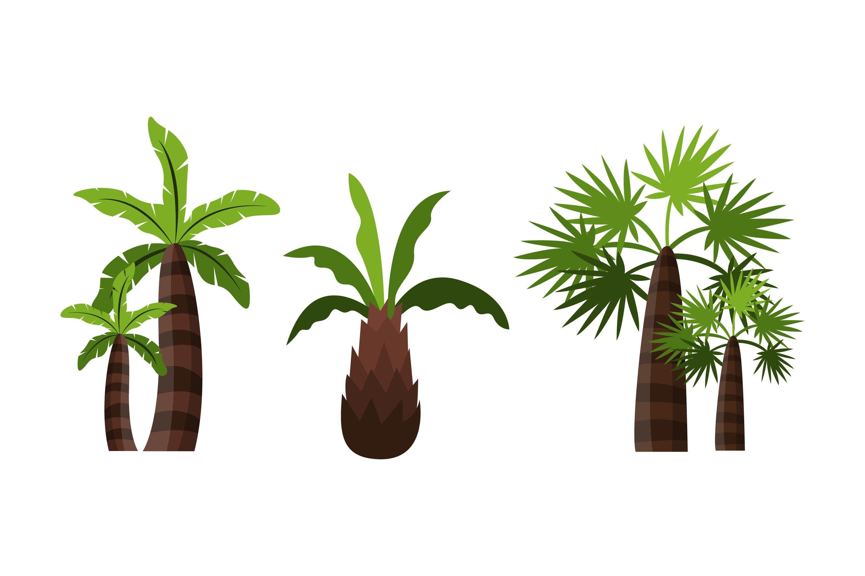 Palm Tree Illustrations example image 1