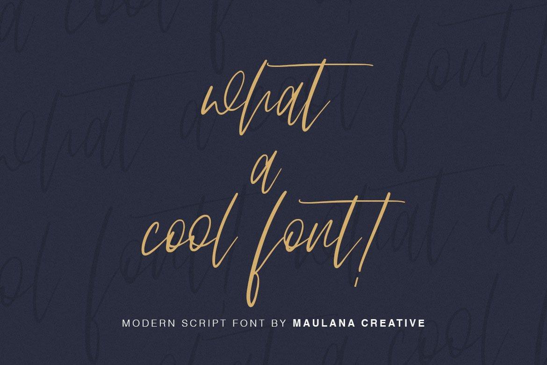 Arttifac - Modern Script Font example image 6
