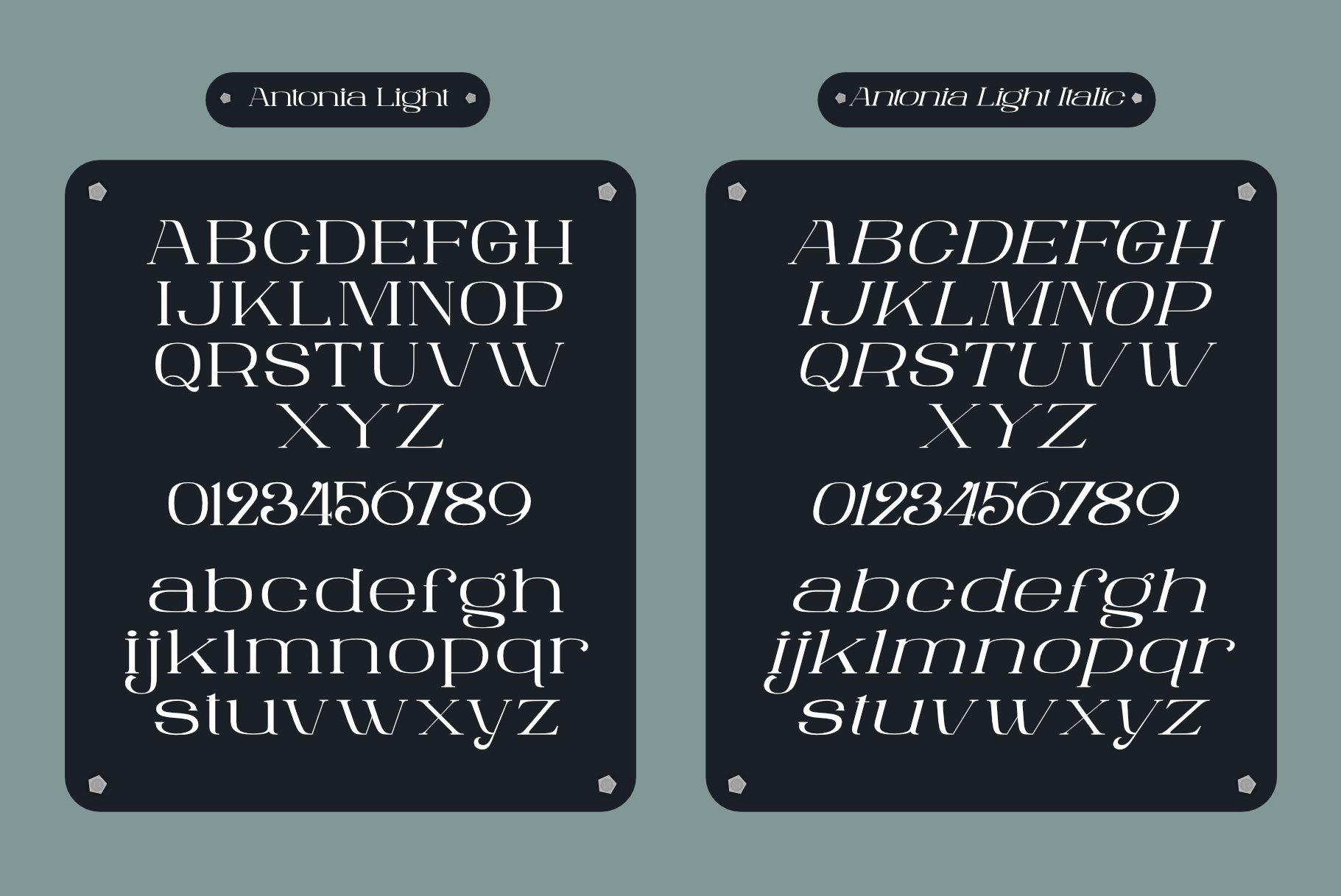 ANTONIA - The Classino Serif example image 6