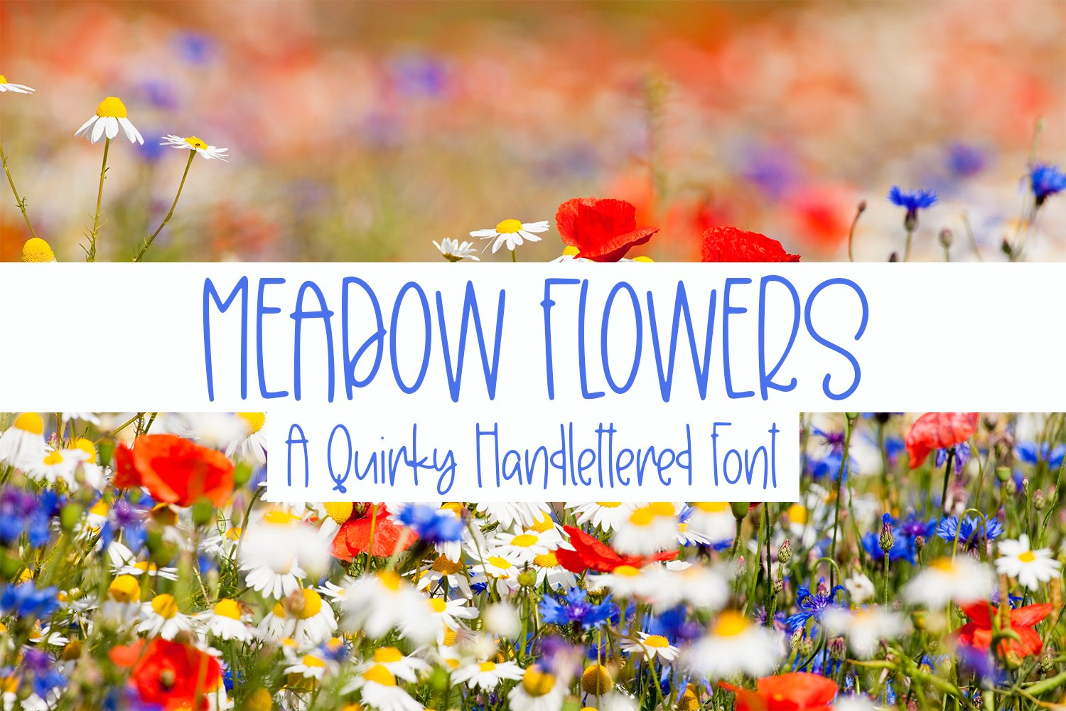 Meadow Flowers - A Quirky Hand-Lettered Font example image 1