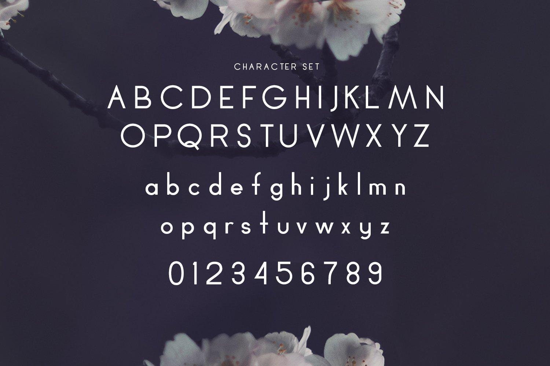 Cherry Blossom example image 3