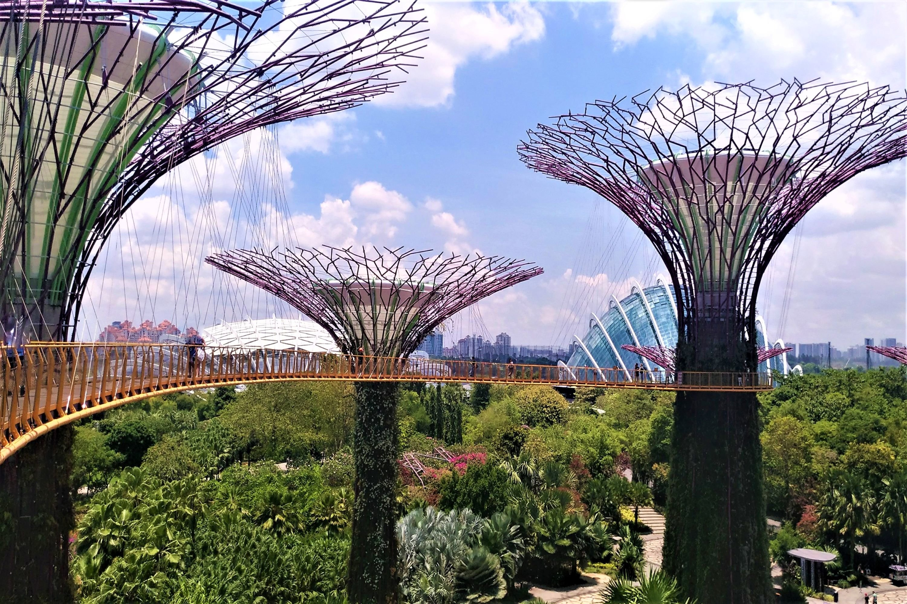 Amazing gardens by the bay in Singapore example image 1