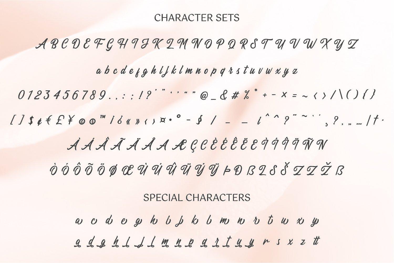 Dhealova - Romantic Script example image 9