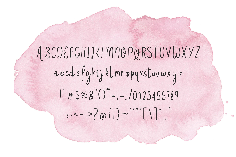 14 Fonts bundle vol.3 example image 28