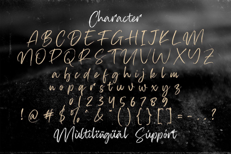 Firsta - Handwritten Font example image 11