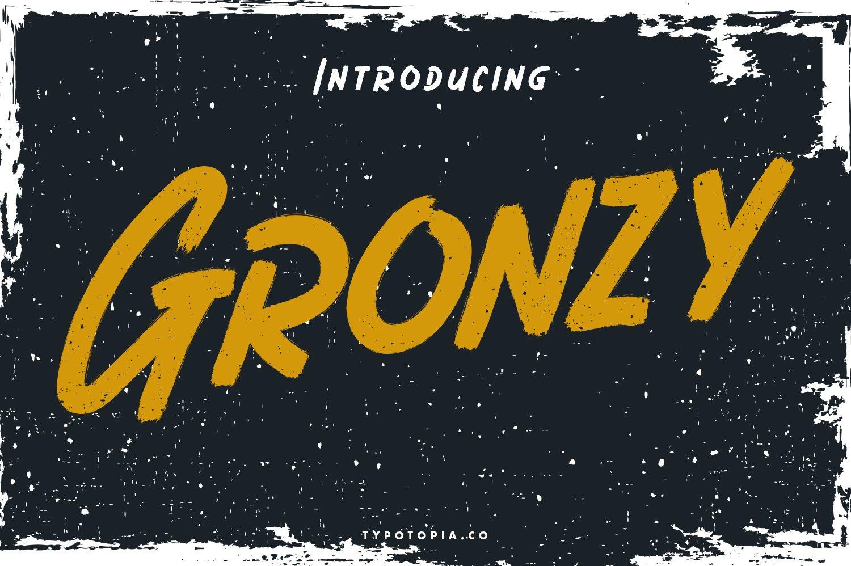 Gronzy - Brush Font example image 1