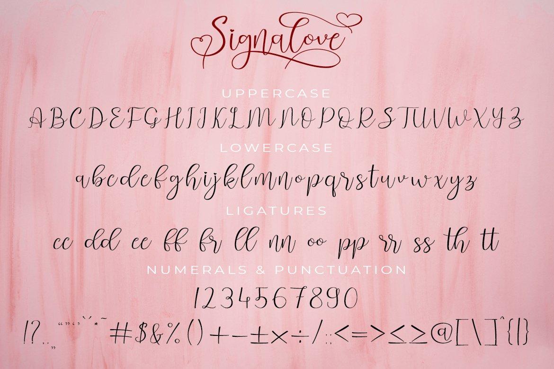 Signalove | Modern Calligraphy Typeface example image 8