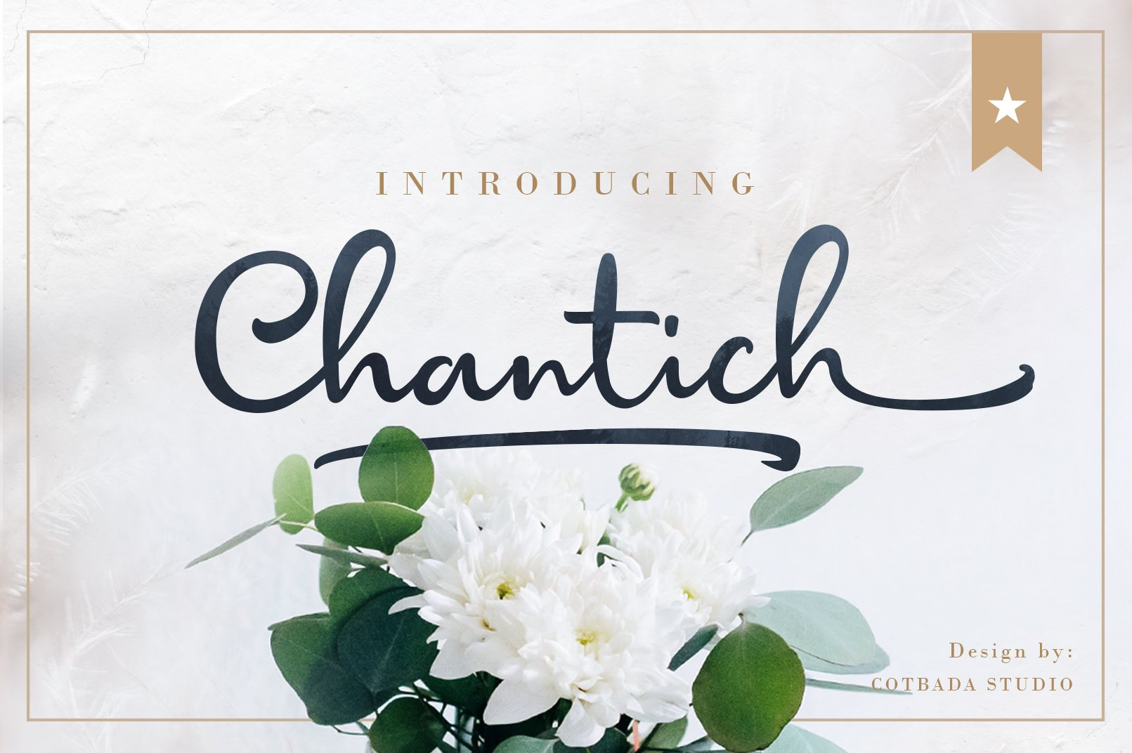 Chantich Script Font example image 1