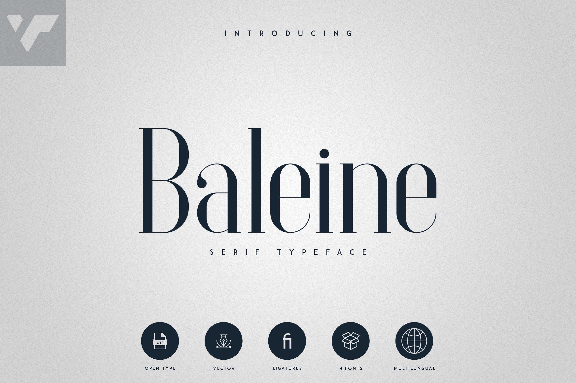 Baleine - Serif Typeface   4 weights example image 1
