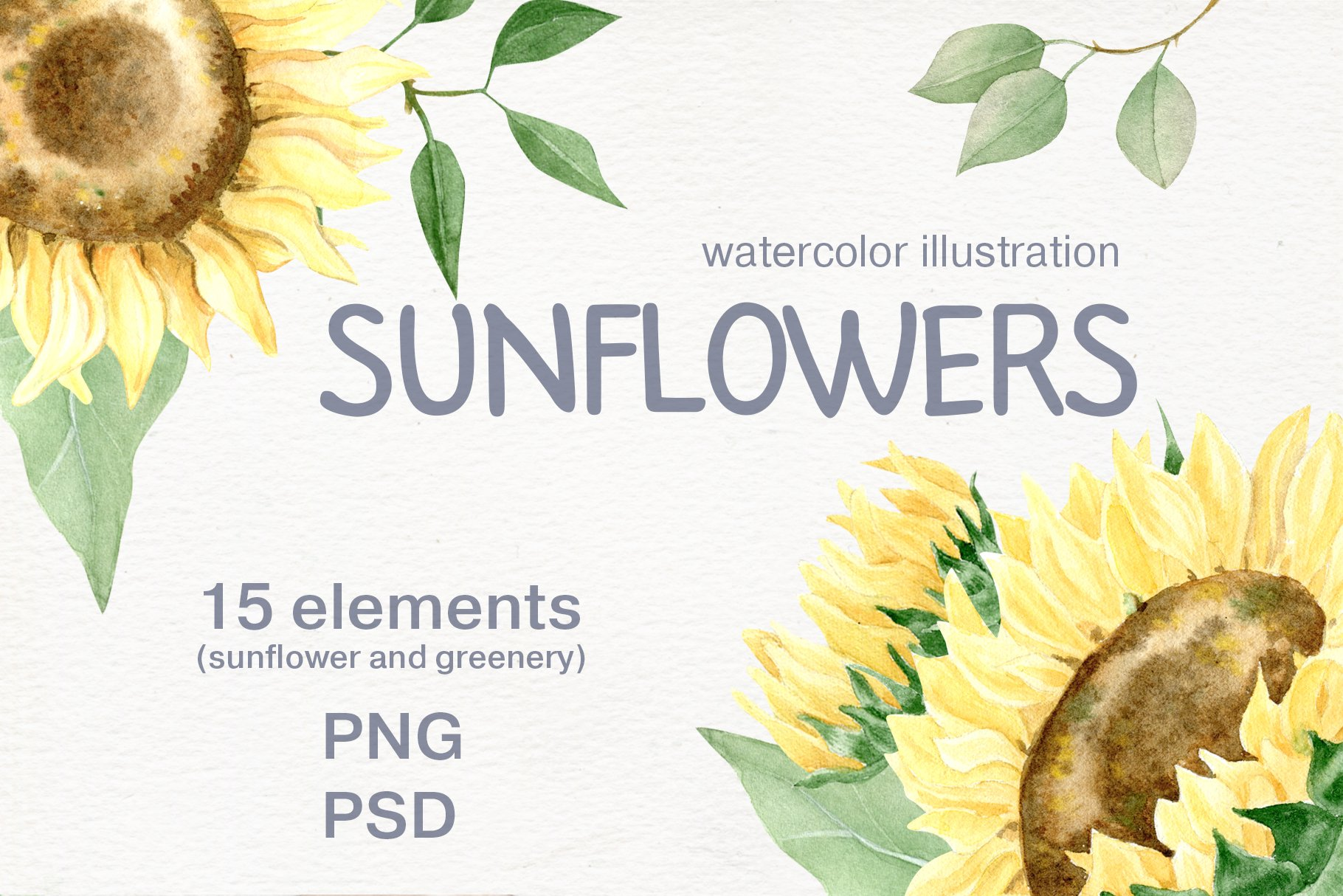 Watercolor sunflower. Rustic yellow flowers clip art. example image 1