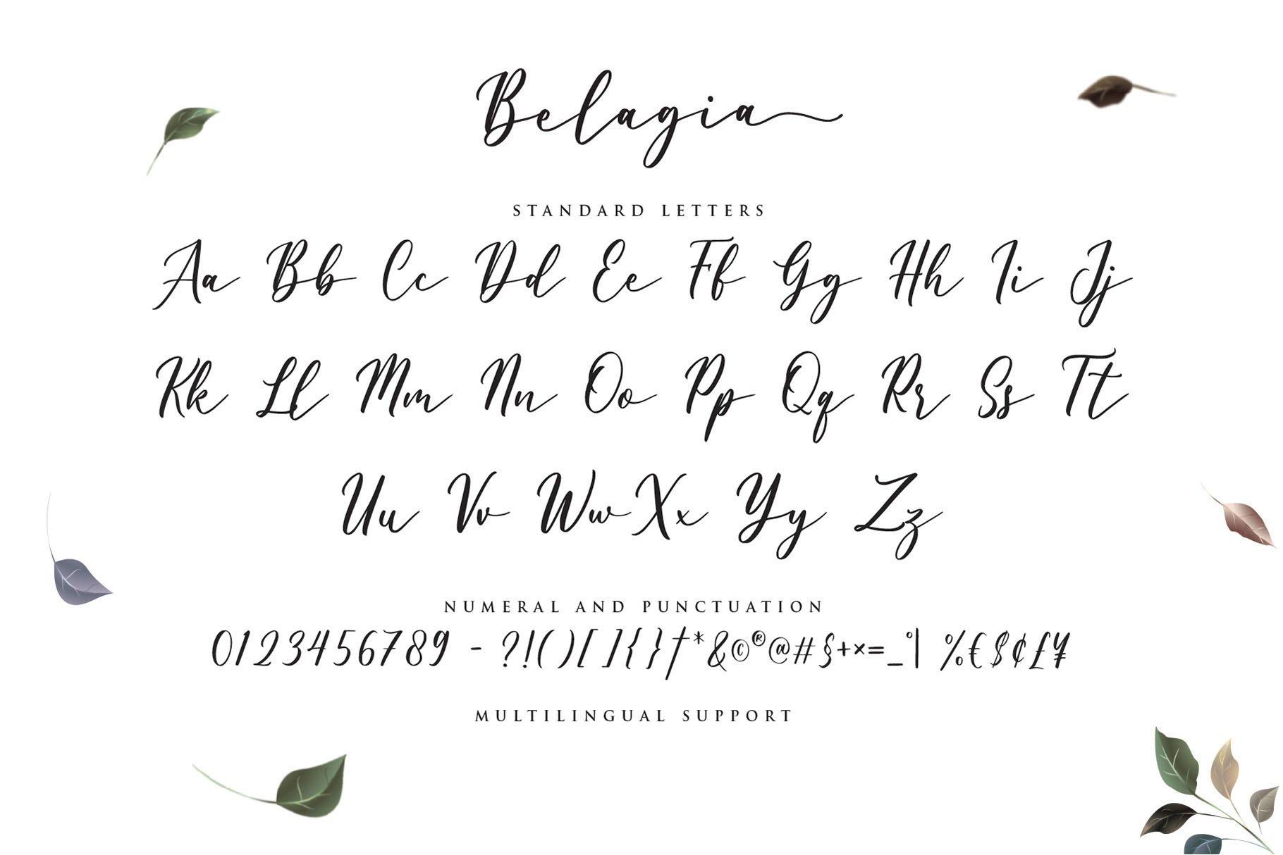 Belagia - Classy Calligraphy example image 6