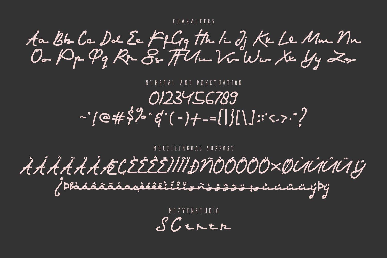 Shorter example image 5