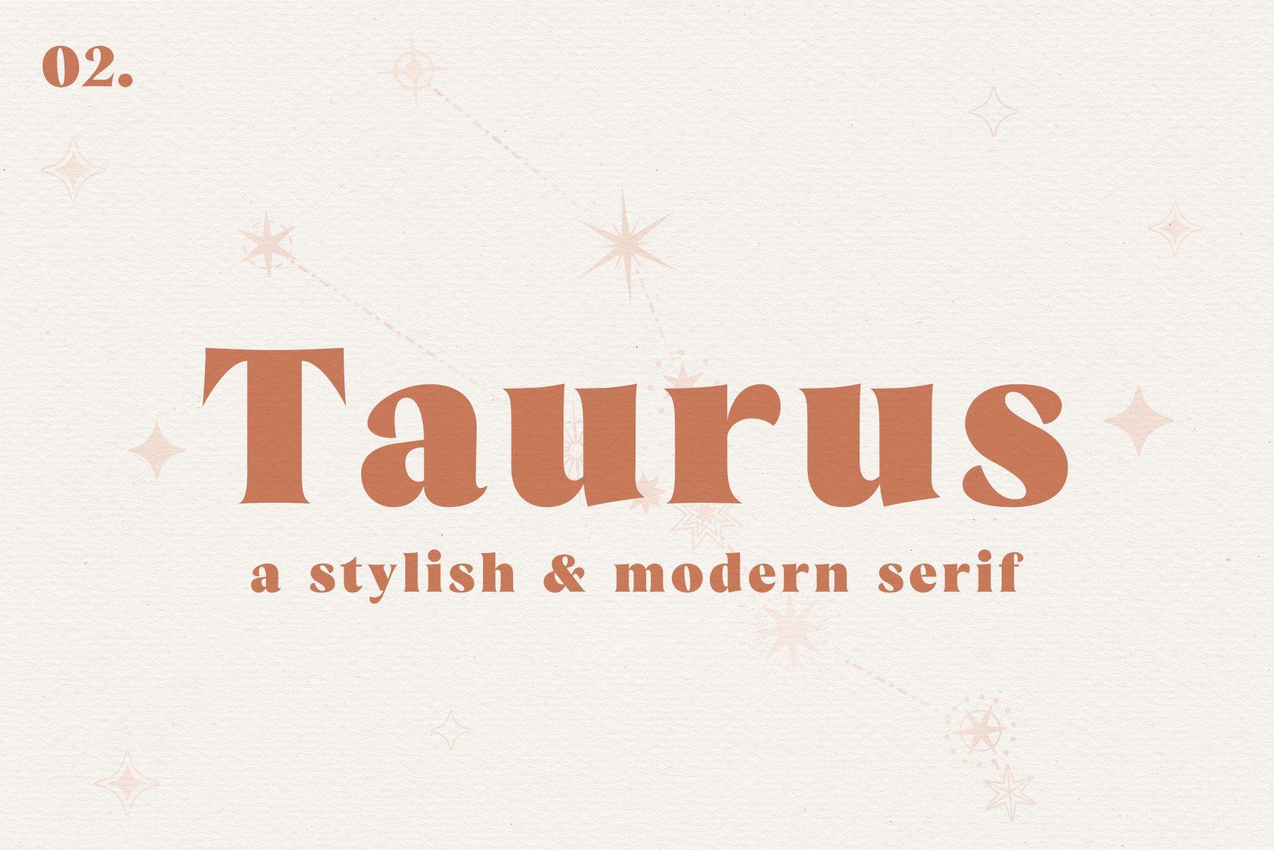 Taurus // A Stylish & Modern Serif example image 1